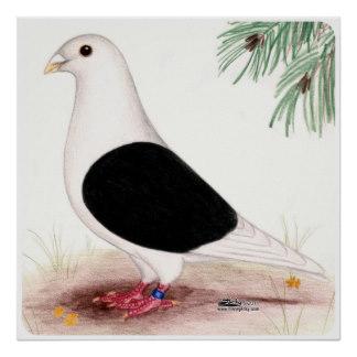 saddle_homer_pigeon_print-r485451e4ee5042f698d40e2880cea28d_w2q_8byvr_324