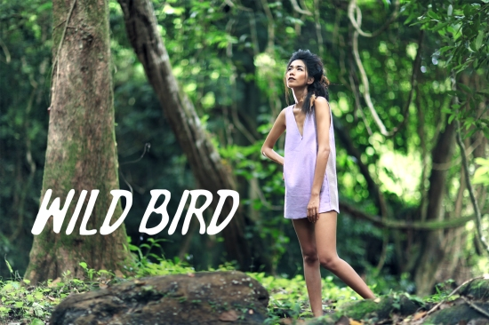 WILDBIRDS